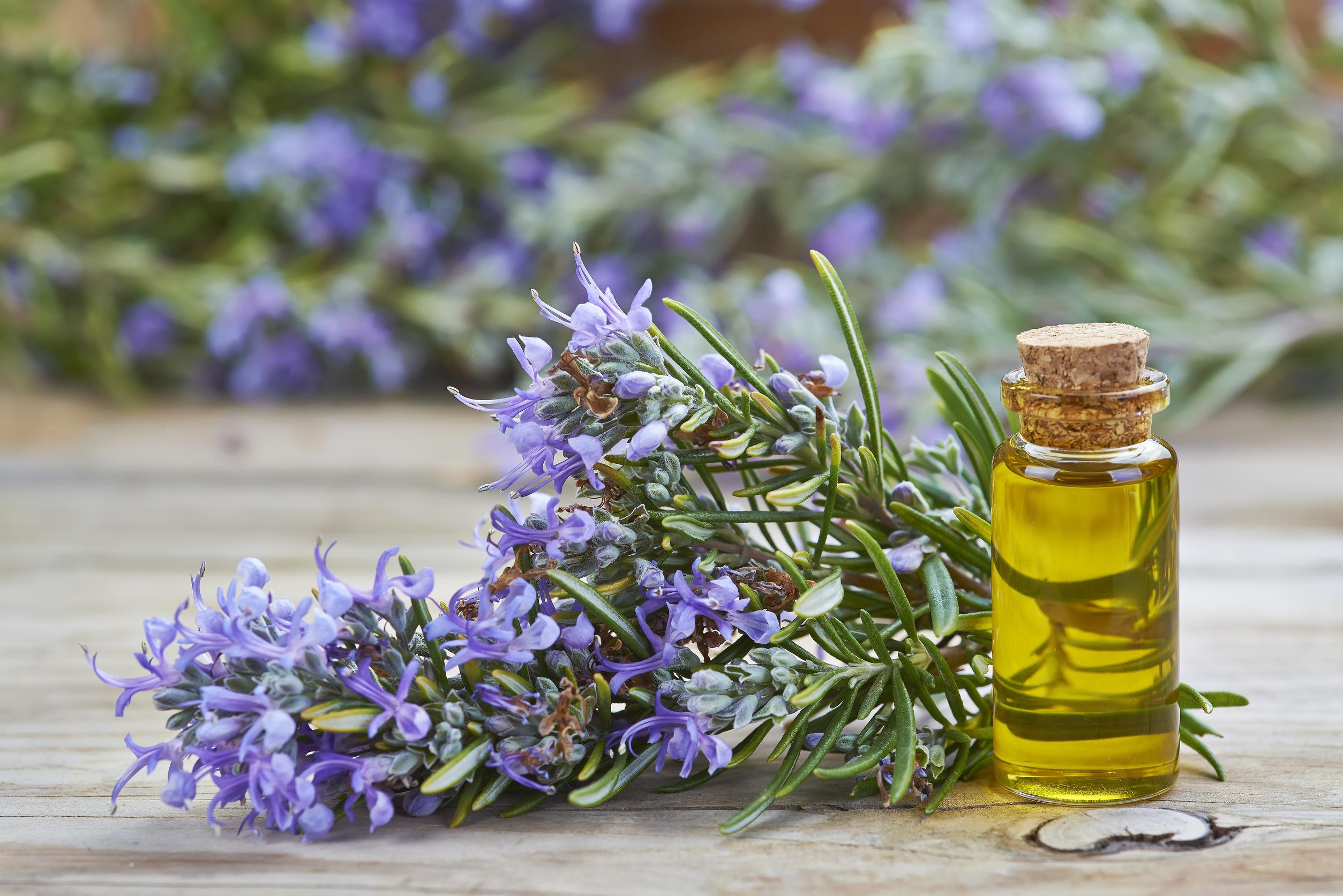 Эфирные масла розмарина, кедра и шалфея против выпадения волос